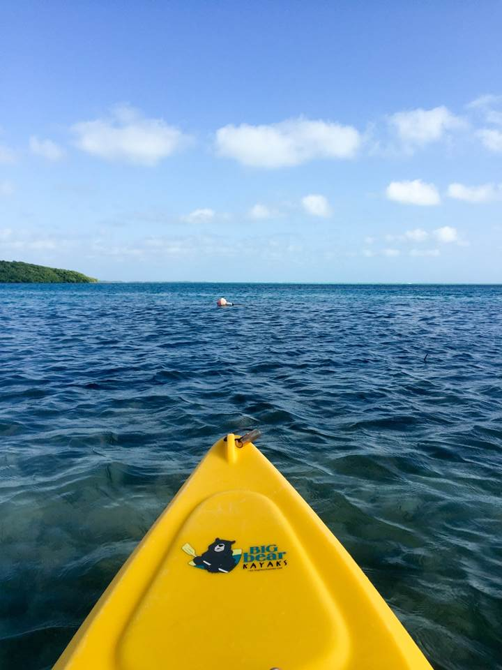 view from kayak in Belize