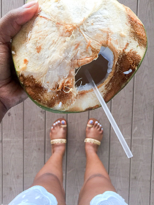 freshly-picked and cracked coconut with straw