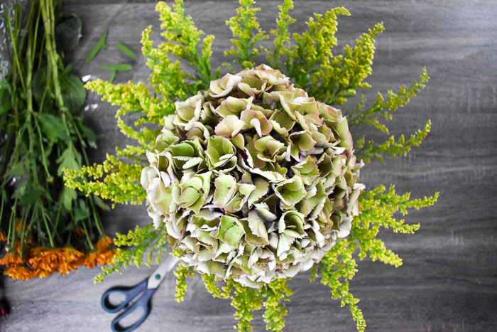 antique hydrangea surrounded by goldenrod