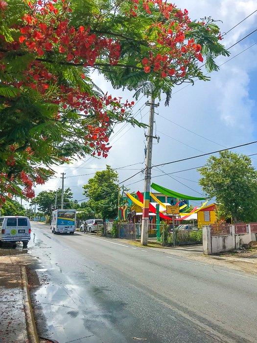 street in Loiza, Puerto Rico