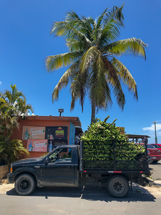 truck full of plantains outside Puerto Rican restaurant